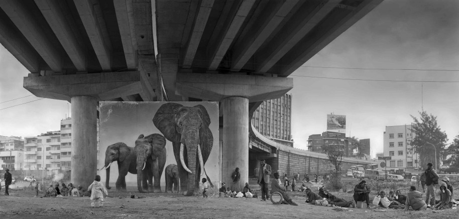 Underpass with Elephants (Lean Back, Your Life is on Track) 2015