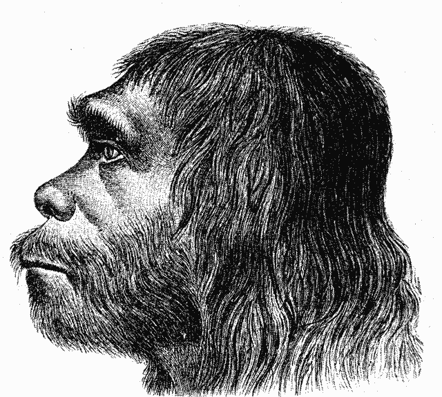 Hermann Schaaffhausen, First reconstruction of Neanderthal man, 1888. Courtesy of Wikimedia Commons.