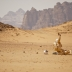 The Last Days on Mars - Exclusive Image 3/3