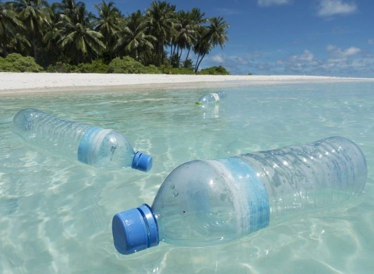 Plastic Pollution in Ocean Proves Sea Creatures Are Absolute Slobs