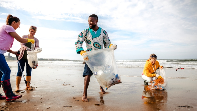 Volunteer For A Beach Clean Up