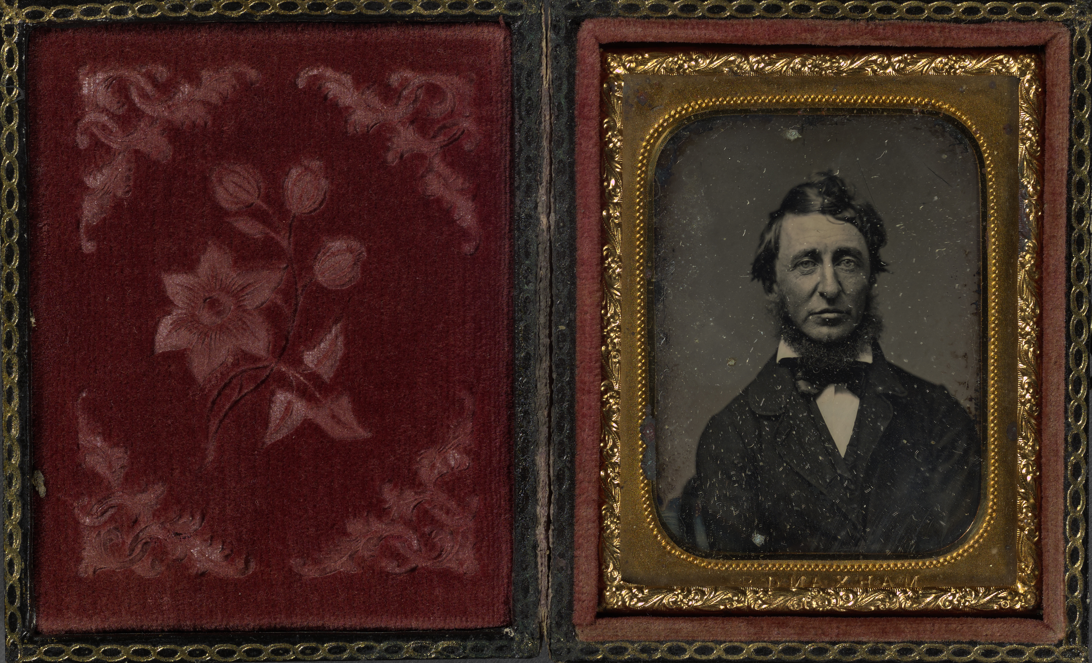 """""""This Ever New Self: Thoreau and His Journal"""" Exhibit"""