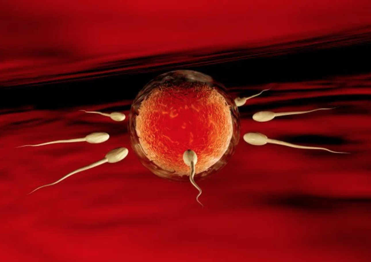 Meanwhile on Mars: Sperm Can Survive 200 Years, Scientists Calling It First Jizzworthy Planet